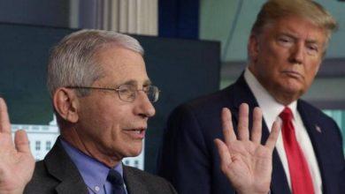 Photo of مدير المعهد الأمريكي للأمراض المعدية يزف بشرى بشأن التوصل لعلاج كورونا