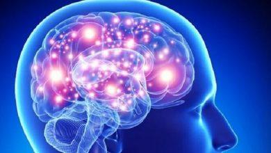 Photo of دراسة: العلاج بالضوء والصوت يمكن أن يساعد في علاج الزهايمر